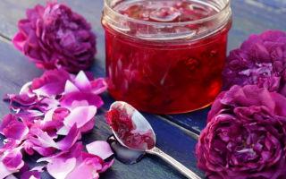 Варенье из лепестков роз: особенности приготовления вкусного и полезного лакомства