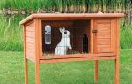 Выращивание кроликов на даче, с чего начать!