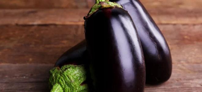 Робин гуд — сорт вкусных баклажанов высокой урожайности