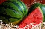 Арбуз: это земляной фрукт или овощ