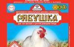 Витамины для цыплят в первые дни жизни