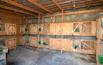 Разведение кроликов в гараже: особенности и характеристика данного способа