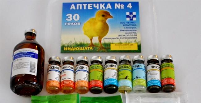 лекарство для маленьких цыплят