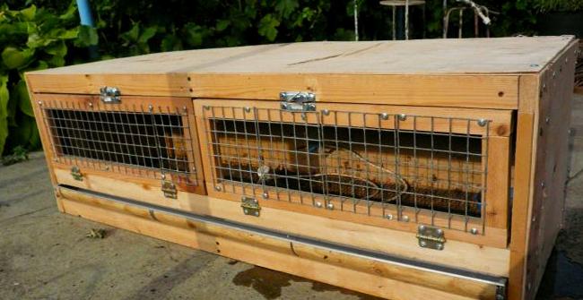 деревянная клетка для цыплят