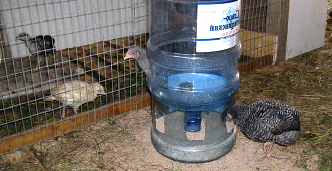 кормушка для птиц из бутыли