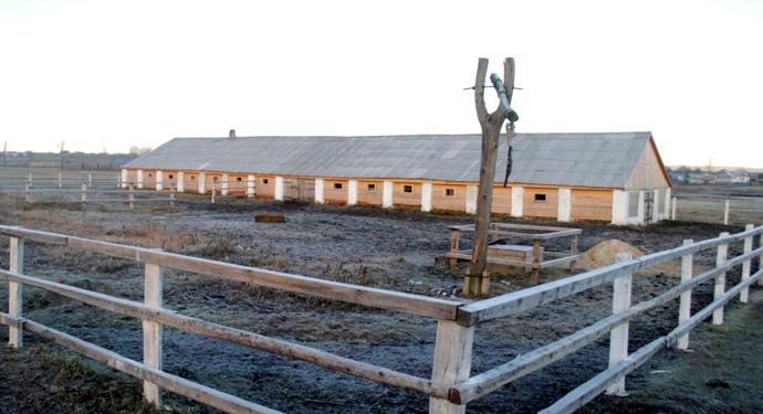 готовое стойло для заселение быков