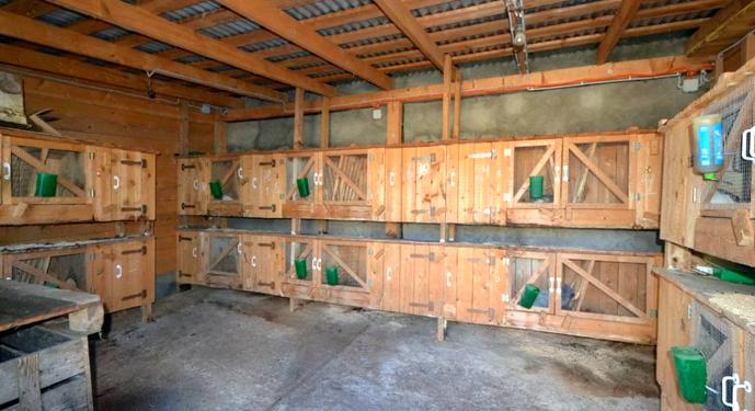 клетки кроликов в гараже