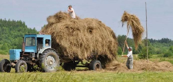 грузовик и сено