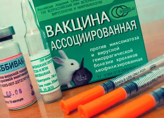 много вакцин