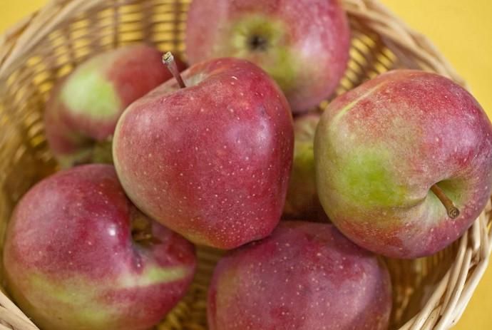 яблоки в блюде